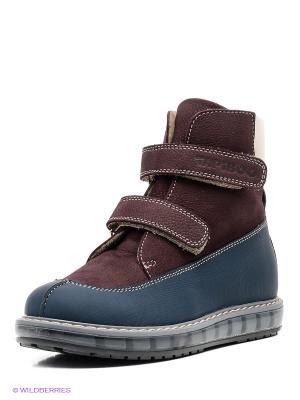 Ботинки TAPiBOO. Цвет: бордовый