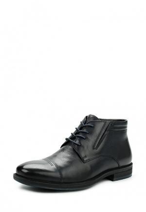 Ботинки классические Dino Ricci. Цвет: синий
