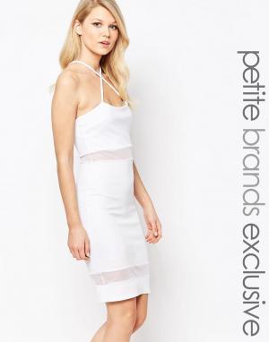 John Zack Petite Облегающее платье с сетчатыми вставками и бретельками. Цвет: белый