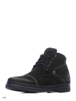 Ботинки Dimenni. Цвет: коричневый