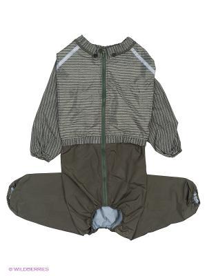 Дождевик холодный (Ризеншнауцер), мальчик ТУЗИК. Цвет: зеленый