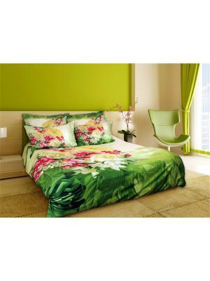 Постельное белье Vesenniy Buket 2,0 сп. Buenas Noches. Цвет: зеленый, молочный, розовый