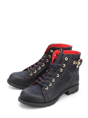 Ботинки Pera Donna. Цвет: синий