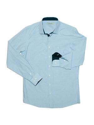 Сорочка STENSER. Цвет: белый, синий