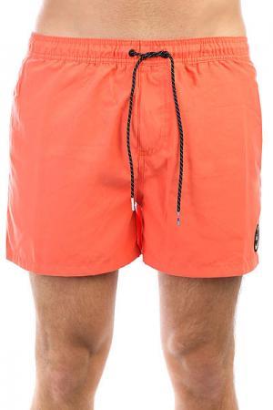 Шорты пляжные  Everydvl15 Nasturtium Quiksilver. Цвет: оранжевый