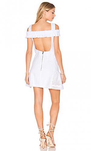 Свободное мини платье из эластичных кружев marthe By Johnny. Цвет: белый