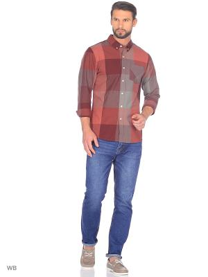 Рубашка Befree. Цвет: терракотовый, коричневый