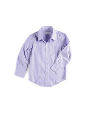 Рубашка Appaman. Цвет: лиловый
