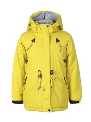 Куртка Arista. Цвет: светло-зеленый