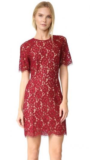 Кружевное платье Spencer WAYF. Цвет: гранатовый