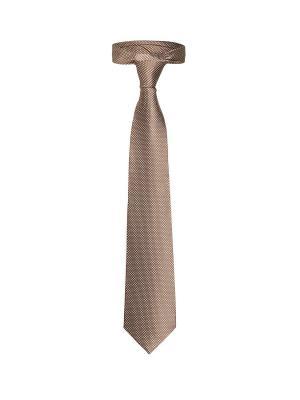 Классический галстук Поездка в Мюнхен с модным принтом Signature A.P.. Цвет: коричневый, белый