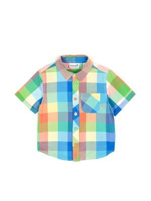 Рубашка Coccodrillo. Цвет: синий, зеленый, оранжевый