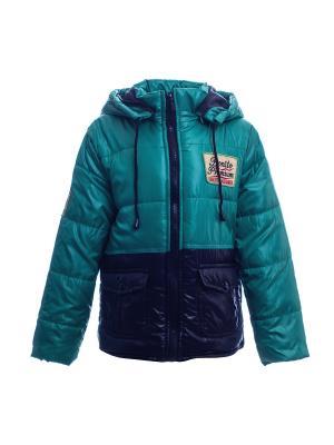 Куртка Bonito kids. Цвет: черный, зеленый