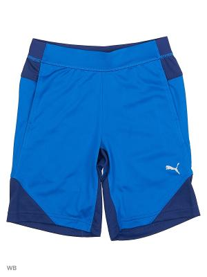 Шорты Gym Poly Shorts PUMA. Цвет: голубой