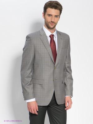 Пиджак Donatto. Цвет: серый, желтый, синий