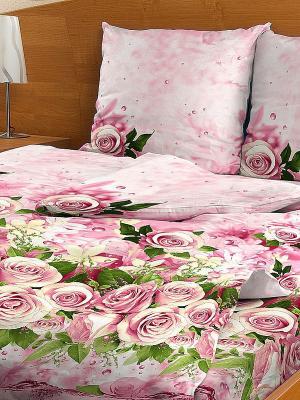 Комплект постельного белья Letto. Цвет: розовый, зеленый