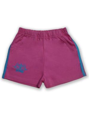 Шорты UMKA. Цвет: голубой, розовый