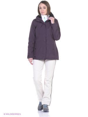 Куртка Brodiaea REGATTA. Цвет: фиолетовый