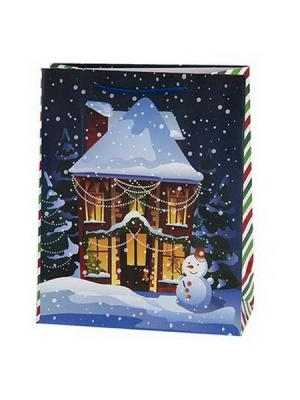 Домики Пакет подарочный бумажный, 26х32х11см, GC Design 4 штуки СНОУБУМ. Цвет: синий