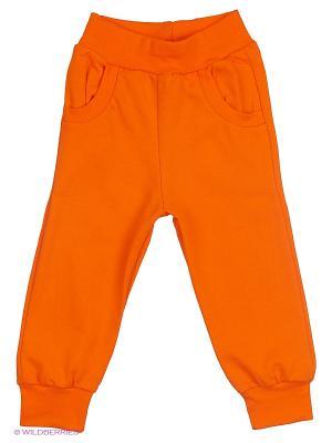 Брюки Утенок. Цвет: оранжевый