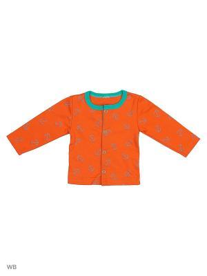 Кофта Babycollection. Цвет: оранжевый