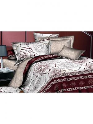 Комплект постельного белья 1,5сп, поплин BegAl. Цвет: бордовый