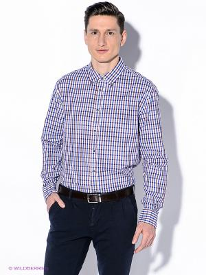 Рубашка INCITY. Цвет: синий, сливовый, белый