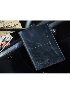 Органайзер/бумажник Вектор. Цвет: черный