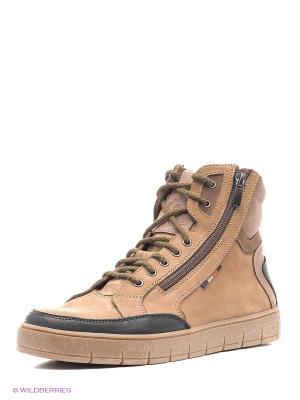 Ботинки Зебра. Цвет: светло-коричневый