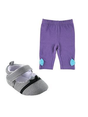 Комплекты Лосины, 1 пара, + Пинетки , Luvable Friends. Цвет: фиолетовый, черный