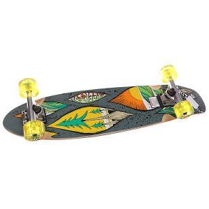 Скейт круизер  Droplet Mid Complete Multi 8 x 32 (81.3 см) Freeride. Цвет: серый,мультиколор
