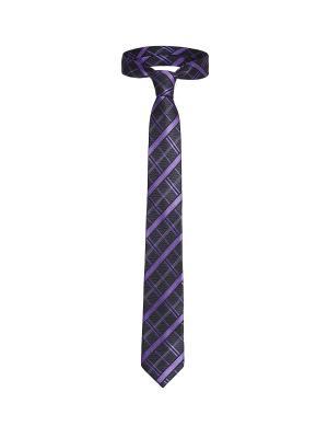Стильный галстук Конференция в Мюнхене с модным принтом Signature A.P.. Цвет: серый, фиолетовый
