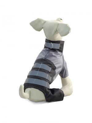 Комбинезон для собак TRIOL. Цвет: серый