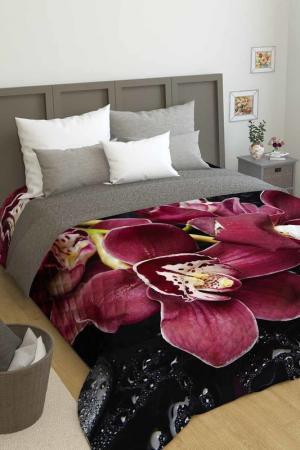 Покрывало Орхидея Сирень. Цвет: черный, бордовый