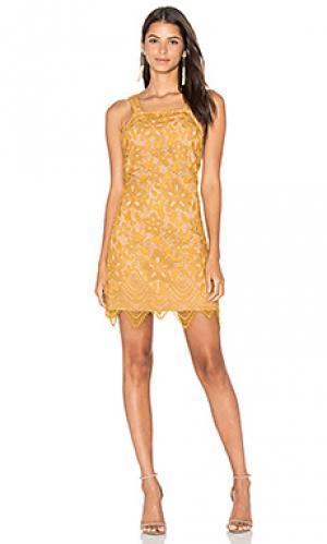 Кружевное мини-платье orleans WAYF. Цвет: желтый