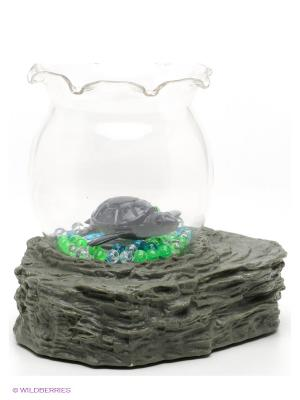 Набор Аквариум Amico. Цвет: прозрачный, зеленый