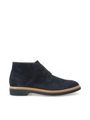 Ботинки GEOX. Цвет: голубой