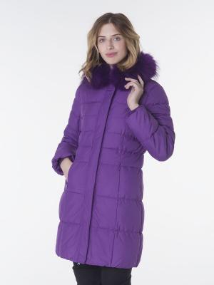 Куртка EPATAGE. Цвет: лиловый