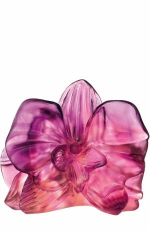 Скульптура Orchid Daum. Цвет: розовый