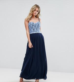 Elise Ryan Платье макси с кружевным лифом. Цвет: темно-синий