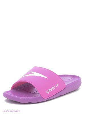Шлепанцы Speedo. Цвет: фиолетовый, розовый