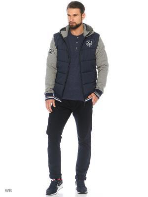 Куртка Stayer. Цвет: темно-серый, светло-серый