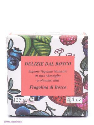 Натуральное растительное мыло Iteritalia. Цвет: белый, зеленый, розовый