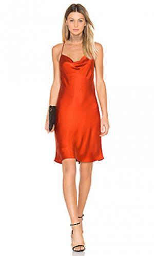 Платье jennifer Backstage. Цвет: оранжевый