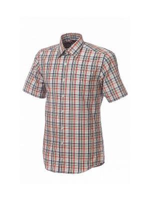 Рубашка BIRIZ. Цвет: оранжевый