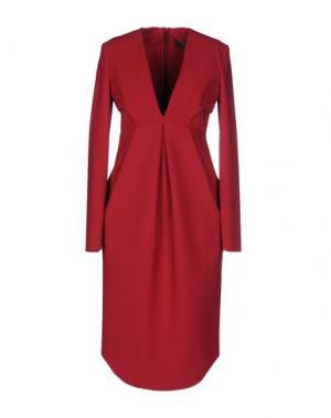 Платье до колена GRETA CONSTANTINE. Цвет: пурпурный