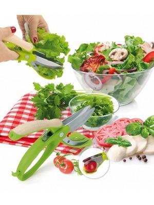 Ножницы для овощей, фруктов и салата АЛЛИГАТОР BRADEX. Цвет: салатовый
