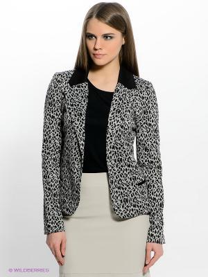 Пиджак Jeanswest. Цвет: серый