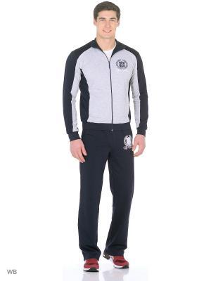 Костюм мужской (джемпер,брюки) MARSOFINA. Цвет: темно-синий, серый