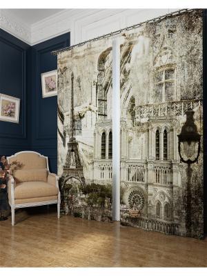 Фотошторы Париж в стиле ретро, Блэкаут Сирень. Цвет: бежевый, серый, коричневый